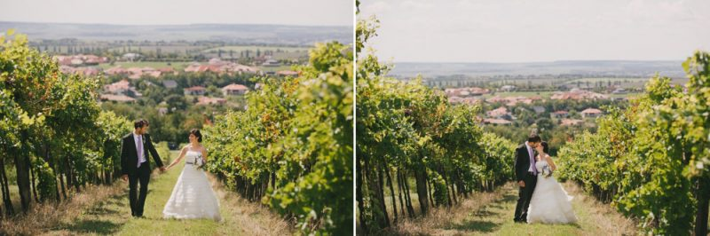vineyard pre-wedding