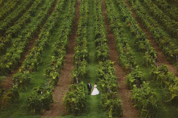 Vineyard pre-wedding - Budapest